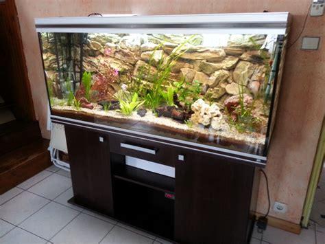 aquarium rena 525 litres par sisko28