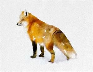 Fox Watercolor Painting Art Print Animal watercolor black ...