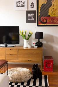 Amaryllis Giftig Für Katzen : welche zimmerpflanzen sind f r hunde und katzen giftig bild der frau ~ Frokenaadalensverden.com Haus und Dekorationen