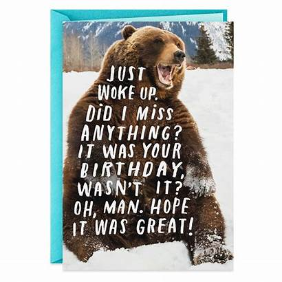 Bear Funny Birthday Brown Hallmark Card Belated
