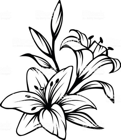 schwarze lilie blume schwarze kontur der lilie blumen vektorillustration stock vektor und mehr bilder ast