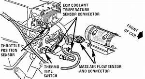 Corvette Wiring   Ecm Sensor 1994 Corvette