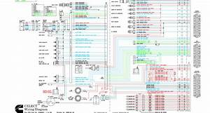 32 Cummins M11 Ecm Wiring Diagram