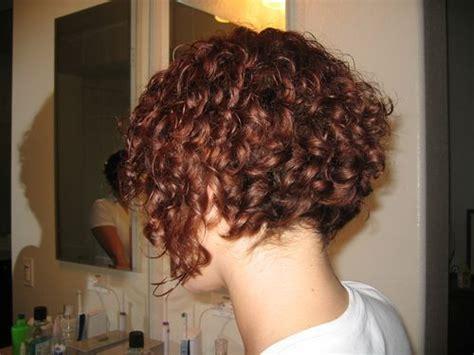 Short 3a Curly Hair Cuts