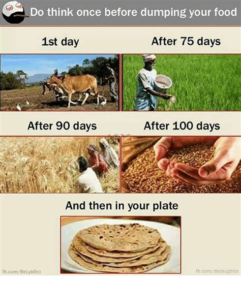 Food St Memes - c do think once before dumping your food 1st day after 75 days after 90 days after 100 days and