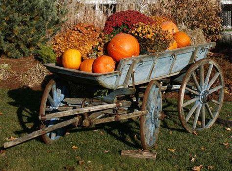 Autumn Splendor!  Sheila's Heart