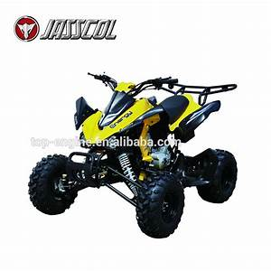 Hot Sale New Cheap 250cc Ce 10inch Racing Adult Electric 4