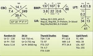 Blood Panel Diagram Related Keywords