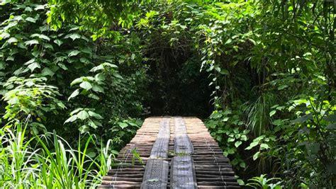 Destino Natural Parque Ecológico De Cayalá Destinos