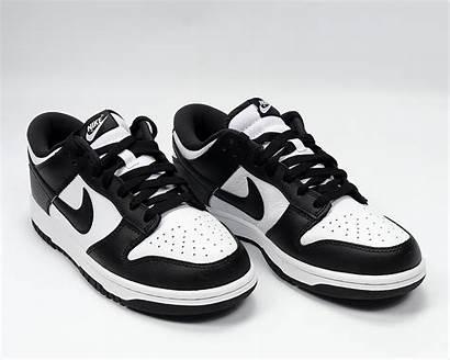 Nike Dunk Low Sp Cu1726 Sb Shoes