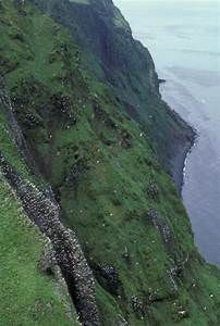 File:A very steep cliff adults have low vegetation for ...