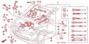 Wiring Diagram Honda City 2006