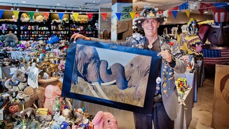 Largest Collection Of Elephant Memorabilia Andy Swan Sets