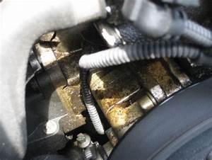 Bmw E46 Motoröl : 318i n42 servopumpe undicht und motor lverschmiert bmw ~ Jslefanu.com Haus und Dekorationen