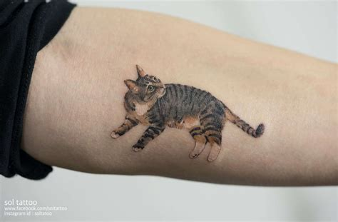 adorable cat tattoos    inked