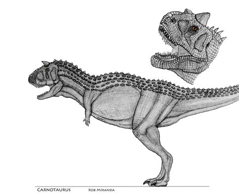 carnotaurus concept art  yankeetrex  deviantart