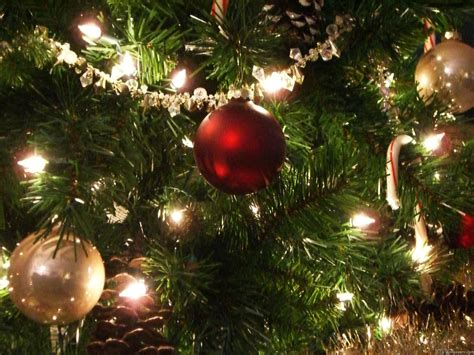 have yourself a merry energy efficient christmas