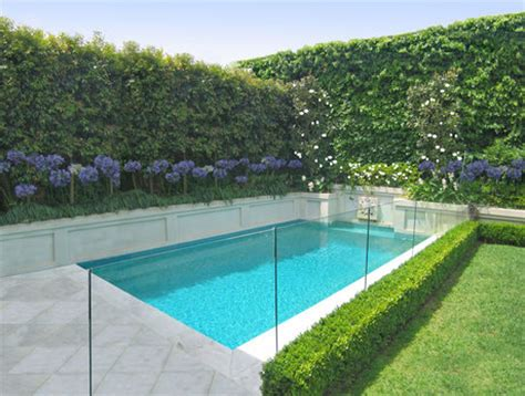 plants for pool area pool tolerant plants pool spa review