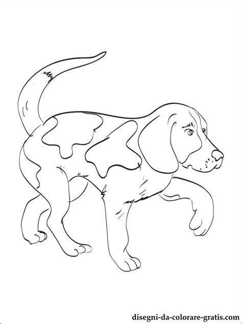disegno  kerry beagle da stampare disegni da colorare