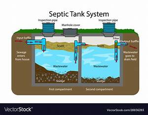 Septic Tank Diagram Septic System Royalty Free Vector Image