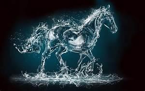 Horse water creative art - Water art 4k UHD wallpaper - HD ...