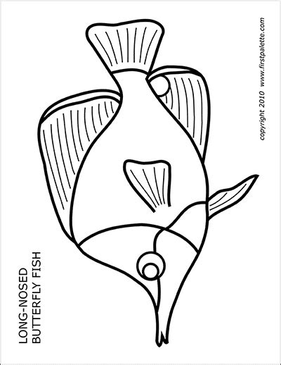 coral reef fishes  printable templates coloring