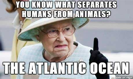 The Queen Meme - it s time for your wednesday morning photo orgy gallery wwi