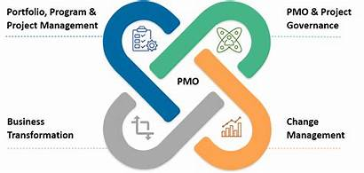 Management Program Pmo Infographic