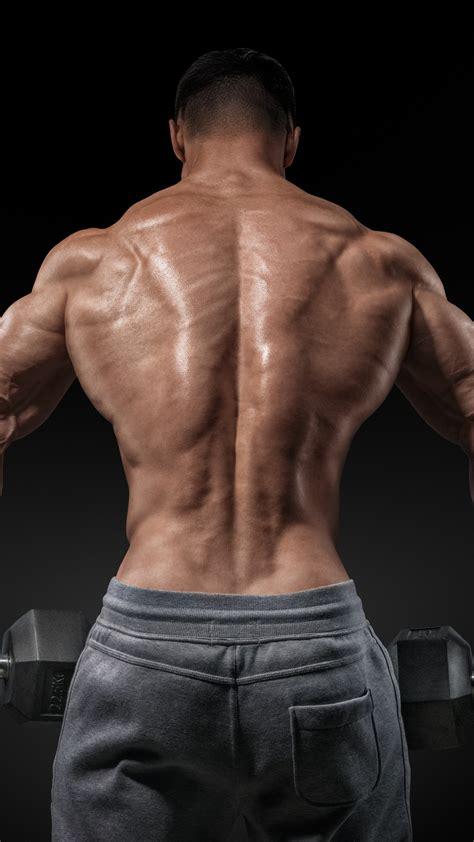 Wallpaper Bodybuilding, exercise, motivation, Training, back, bench standing, barbell, Sport #11200