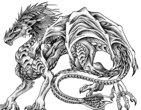 excellent pencil drawings  dragon pencil drawings
