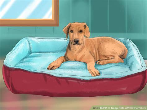 ways   pets   furniture wikihow