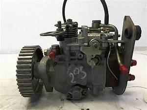 Pompe Injection Diesel : pompe injection d 39 occasion pour peugeot 205 ~ Gottalentnigeria.com Avis de Voitures