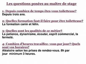 Combien De Temps Pour Récupérer 3 Points : ppt stage en toilettage canin powerpoint presentation id 4090023 ~ Medecine-chirurgie-esthetiques.com Avis de Voitures