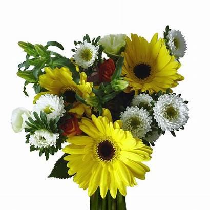 Flowers Delight Bouquets Assorted Globalrose Bouquet Flower
