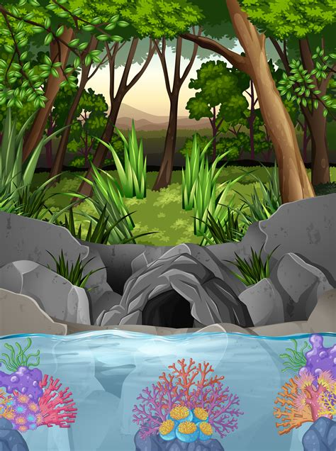 forest scene  cave  trees   vectors