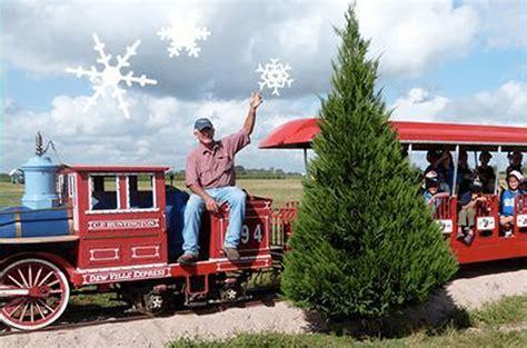 farms christmas tree texas dewberry worth trip