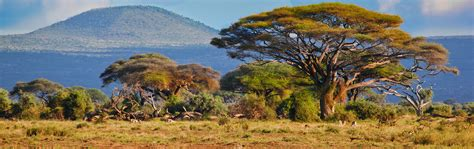 Kenya | USIP