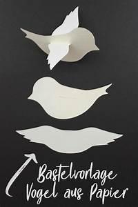Vögel Basteln Zum Aufhängen : baby mobile mit v gelchen bastelvorlage plotterfreebie mobile basteln bastelvorlagen und ~ A.2002-acura-tl-radio.info Haus und Dekorationen