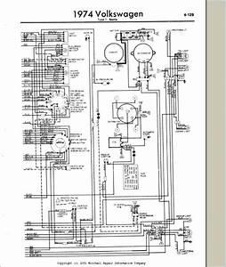 New Era Avr 551 12v Wiring Diagram  U2013 Dogboi Info