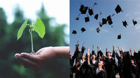 law   philippines requires students  plant