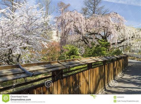 Japanischer Garten Zaun by Zaun Garten Gruner Sichtschutz Terrasse Zeder Sichtschutz