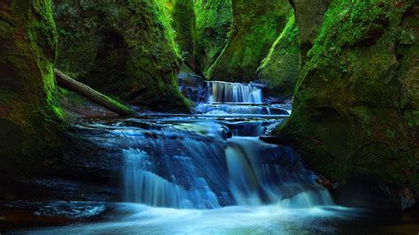 finnich glen deep valley forest stream river hd wallpapers