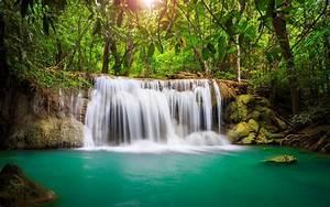Wonderful, Tropical, Waterfall