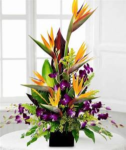 Birds in Paradise - Floral Arrangements - Beneva Flowers