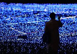 Nobel Prize Goes To Inventors Of Blue Led  Why It Was