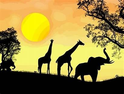 Safari African 4vector Thema Vektor Africa Silhouette