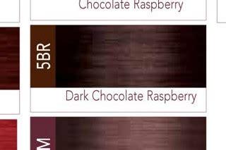iso icolor dark chocolate raspberry br  permanent