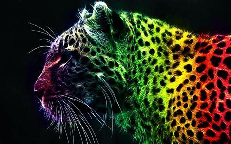 Bright Animal Wallpaper - rainbow bright colors wallpaper 18591234 fanpop