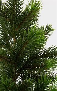 Künstlicher Weihnachtsbaum Weiß : weihnachtsbaum aus kunststoff kaufen my blog ~ Whattoseeinmadrid.com Haus und Dekorationen