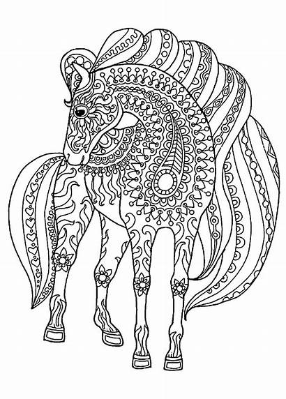 Horse Coloring Horses Pages Patterns Children Printable